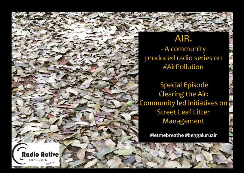 Leaf Litter.jpg